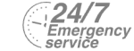 24/7 Emergency Service Pest Control in Charlton, SE7. Call Now! 020 8166 9746