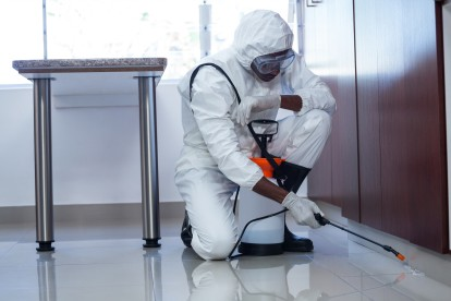 Emergency Pest Control, Pest Control in Charlton, SE7. Call Now 020 8166 9746